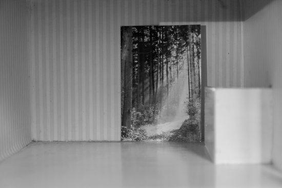 © Judith Weik